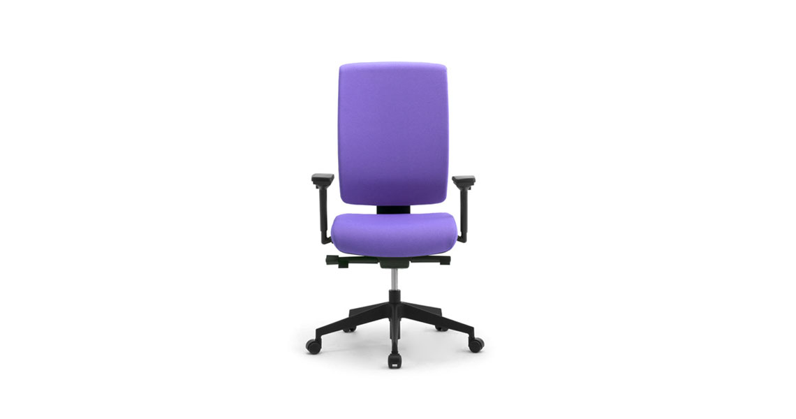 Ergonomic office chair with lumbar support Leyform