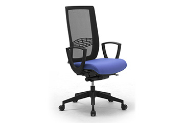 Ergonomic chairs with mesh backrest and lumbar support Wiki Re