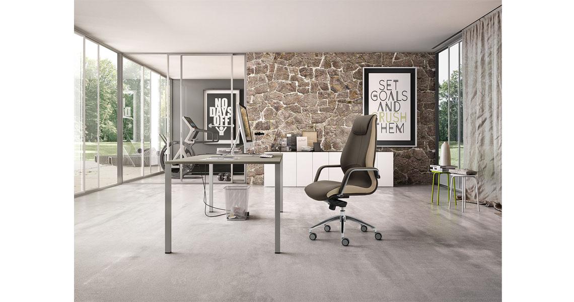 Poltrona di design per ufficio professionale e direzionale ...