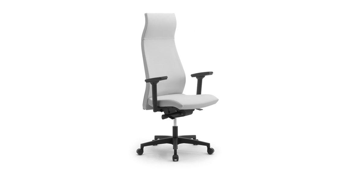 Sedie e poltrone ergonomiche con poggiatesta 81 2008 - Sedie e poltrone ufficio ...